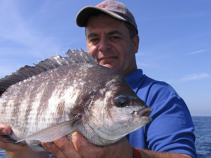 how to catch sea bream from a boat