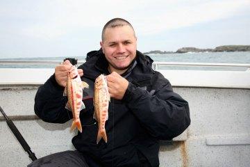 two Braye harbour red mullet for Steve