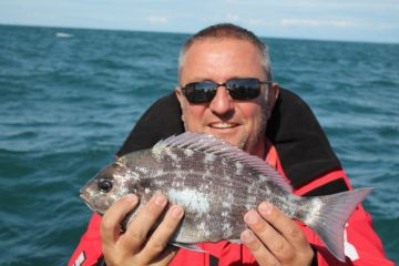 weymouth species hunt bream