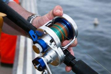 1b9252a7839 The Daiwa LW20HA reel reviewed | Planet Sea Fishing