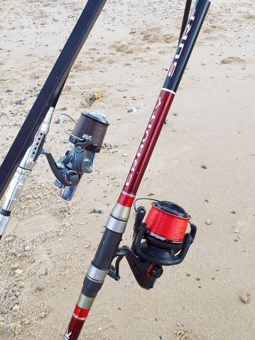 Fixed spool setup for Essex thornback ray
