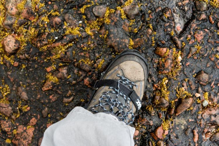 Black algae and weed, the rock anglers underfoot nighmare