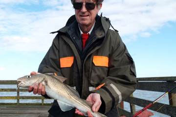 Sudbury angler David Backler with a codling