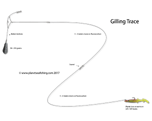 the gilling trace