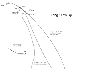 long and low rig