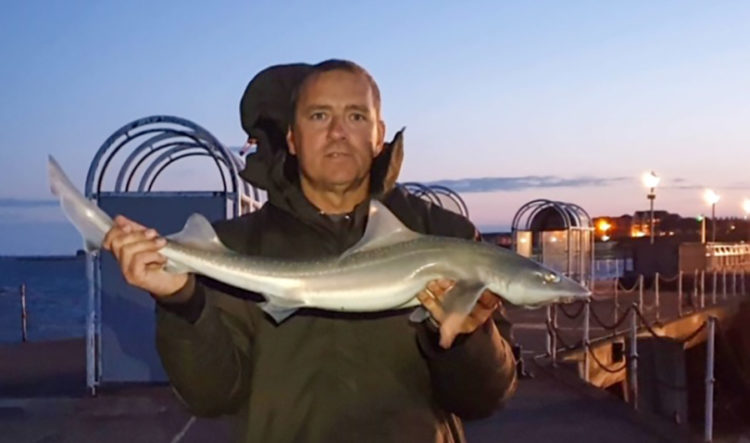 Local angler Den Doherty with a Clacton Pier smoothhound
