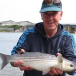 Sea Fishing in Wicklow shore mullet