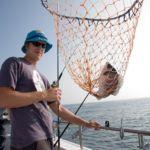 angler with black bream in net