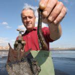 Steve Walker displays a lugworm