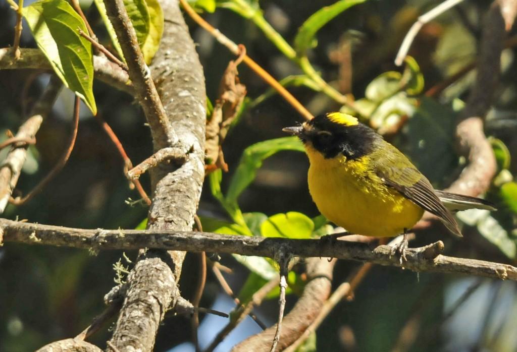 Santa Marta Colombia South America