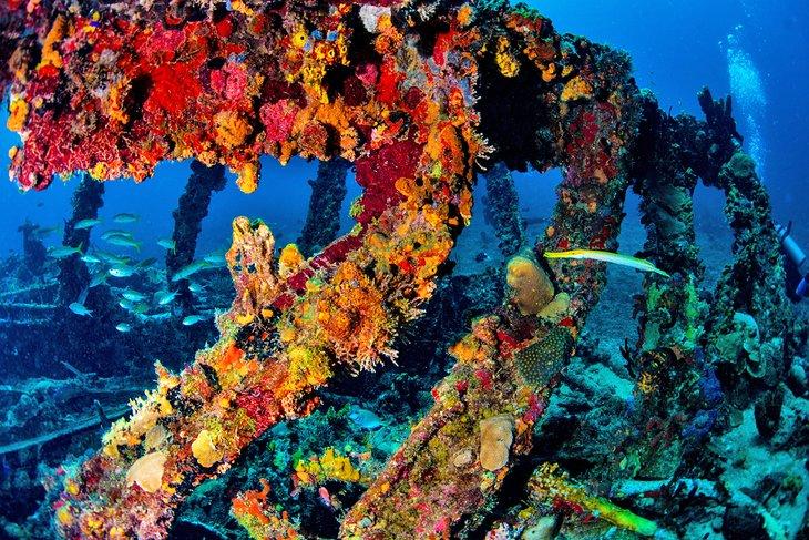Rhone National Maritime Park & RMS Rhone Shipwreck