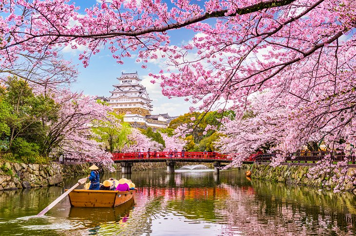 Best Time to Visit Japan | PlanetWare