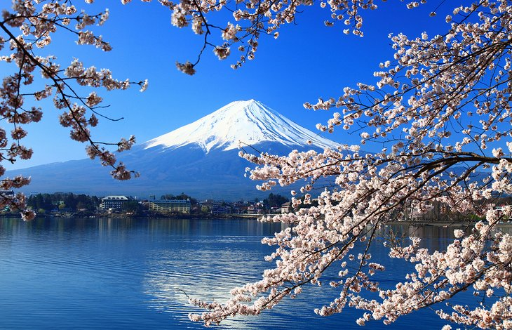And we were there on top of the cloud! From Tokyo To Mount Fuji 4 Best Ways To Get There Planetware