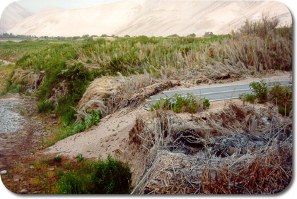 Road destroyed by flooding