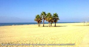 Playa de Sant Salvador, el Vendrell
