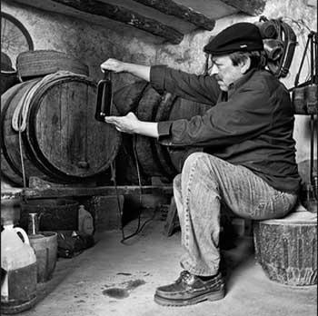 Barricas vinos portugueses