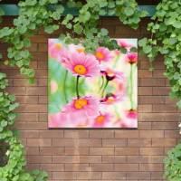 Outdoor Canvas Wall Art - Daisy : buy Outdoor Canvas Wall ...