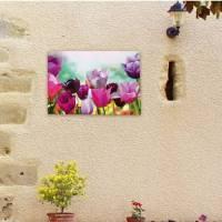 Outdoor Canvas Wall Art - Tulip : buy Outdoor Canvas Wall ...