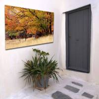 Outdoor Canvas Wall Art - Fauve : buy Outdoor Canvas Wall ...