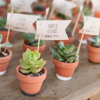 potted succulent escort card