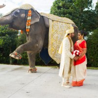 Orlando Indian Wedding