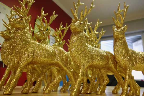 gouden-hertjes