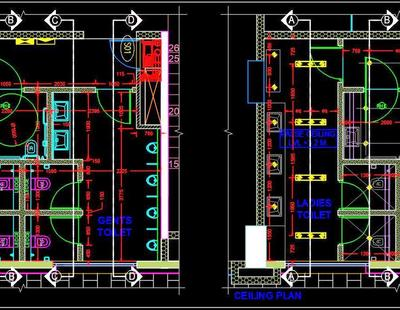 Public Toilet Layout And Ceiling Cad Plan Plan N Design