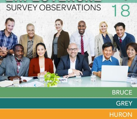 employerone survey observations 2018