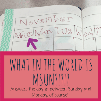 Planner Bloopers, what the heck is MSunday anyways???