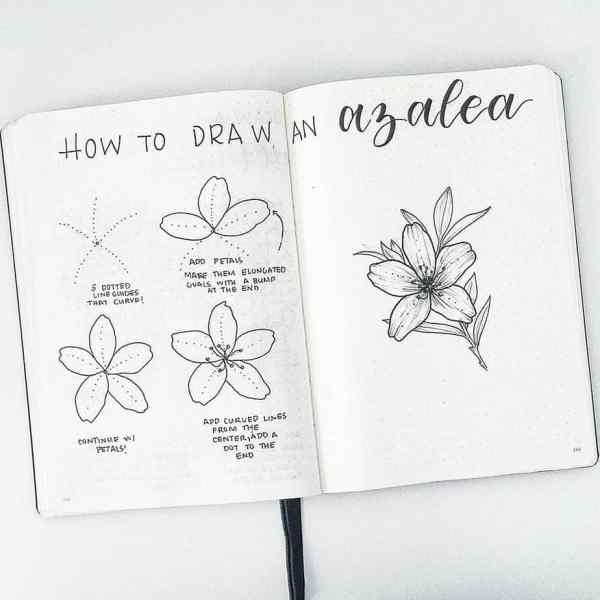 How to draw an azalea.