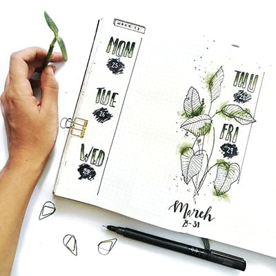 Weekly bullet journal spread with plant doodles and art.