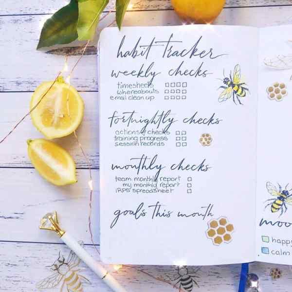 Habit tracker bee theme idea