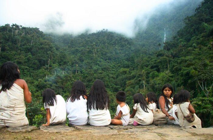 amazon colombia ecuador peru brazil