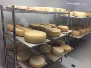 Swiss Cheese Factory Vira Vira