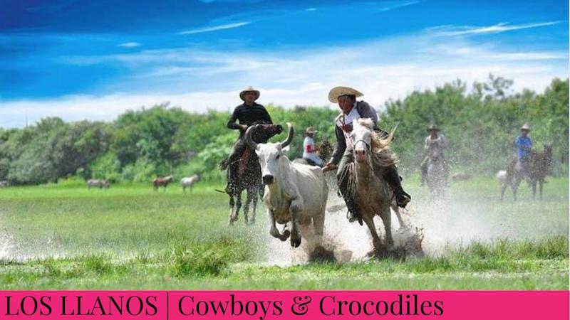 Family Inspired Adventures - Los Llanos, Colombia - Cowboys