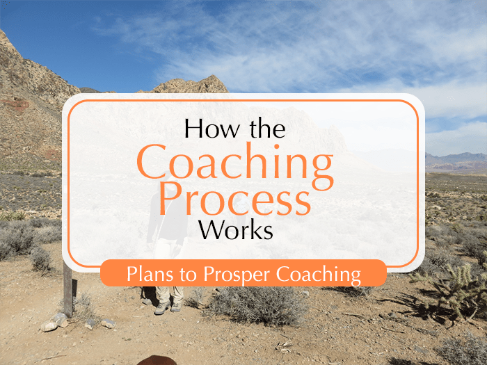 How the Coaching Process Works