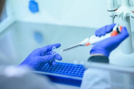 La OMS elige una vacuna de IrsiCaixa y Grifols entre las candidatas para combatir el Covid-19 | PlantaDoce
