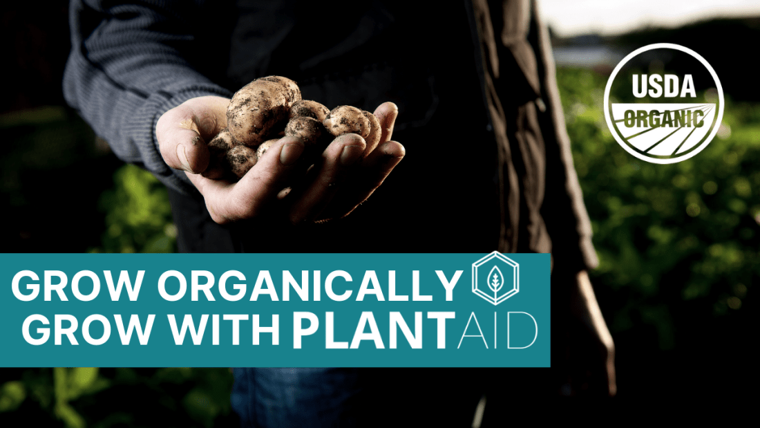 Hypochlorous Acid From Electrolyzed Water is Now Approved For Organic Crop Production