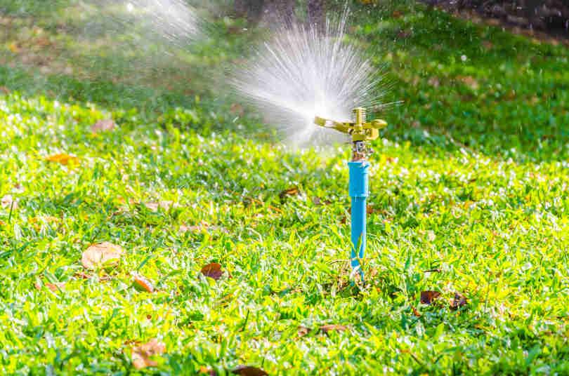 Sprinkler head watering in the lawn