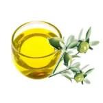 jojoba oil