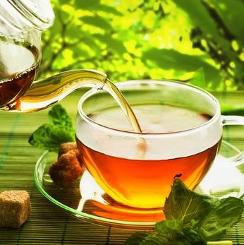 Plantas medicinales para resfriados