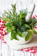 Especies vegetales con Actividad Farmacológica Diaforética