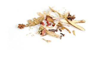 La fitoterapia China (4ta parte): Schizonepeta tenuifolia Briq.