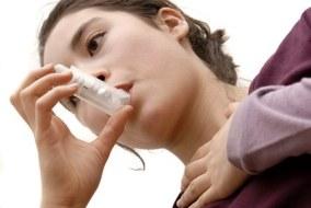 Alergias: Combatir los síntomas con plantas medicinales