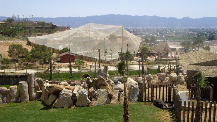 Terra Natura Murcia inaugura un jardín botánico de cactus