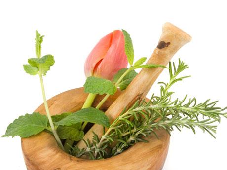 Plantas como ayuda en enfermedades