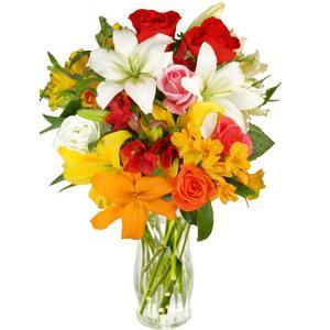 El color de las flores