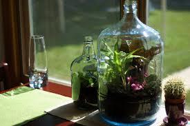 Jardines en botellas