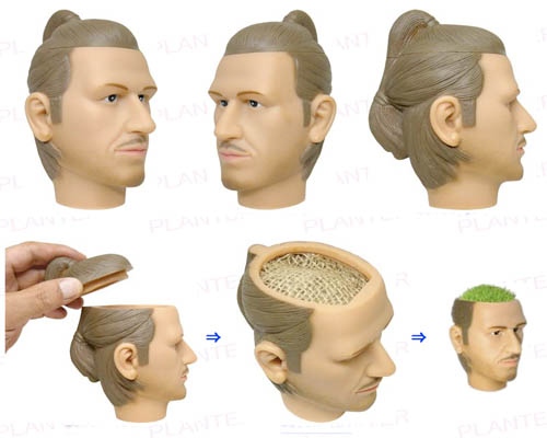 Maceta de David Beckham