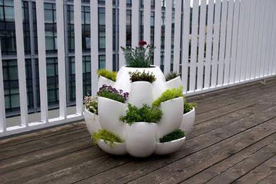 Macetero para varias plantas